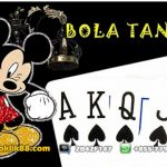 Download Bola Tangkas Gratis